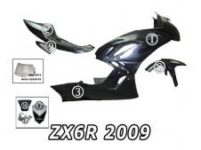 kawasaki zx-6r 2009-10 Carenado Circuito