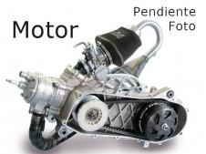 Motor perfecto minicross 50 1984-1985