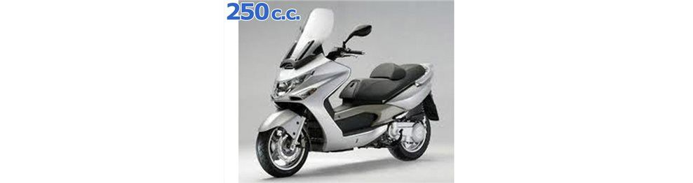 xciting 250 2005-2007