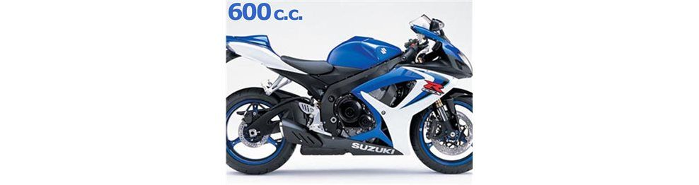 gsx 600 r 2006 - 2007