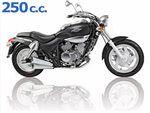 venox 250 2002 - 2006