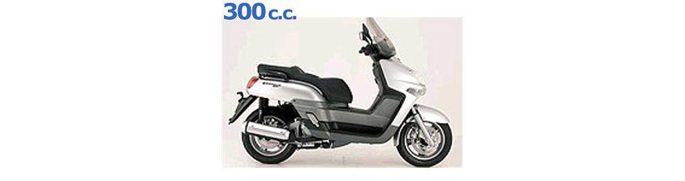versity 300 2004-2007