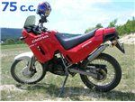 cocis 75 1989-1990