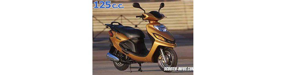 cygnus 125 2000-2003