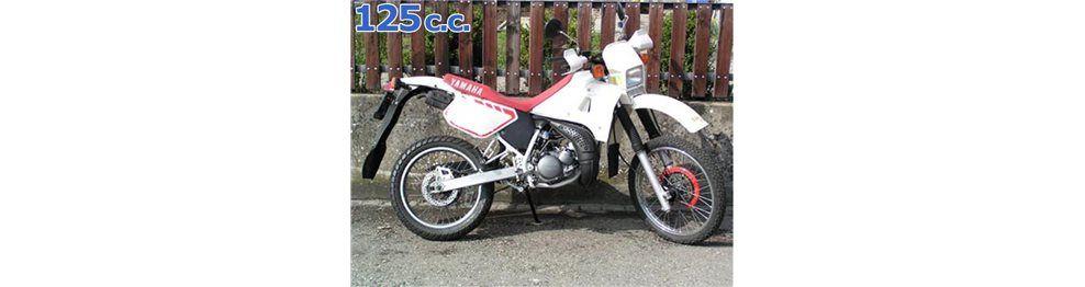 dt 125 1999-2000