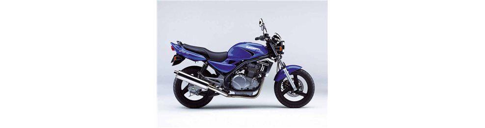 er5 500 cc 2001 - 2004