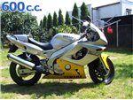 thundercat 600 1994-2007