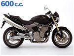 hornet 600 2005 - 2006