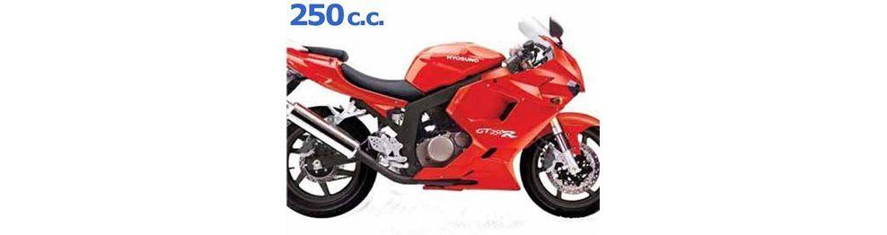 gtr 250 2008-2009