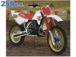 yz 250 1988 - 1989