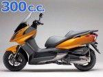 super dink 300 2009-2012