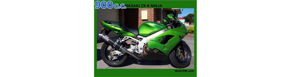 zx9 r 900 cc 2000 - 2001