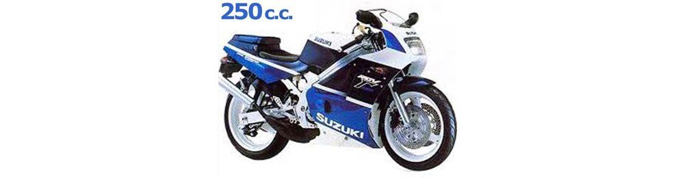 rgv 250 1989-1992