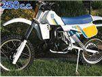 250 cc 1985 - 1989