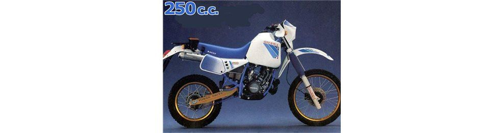 raly 250 1985-1989