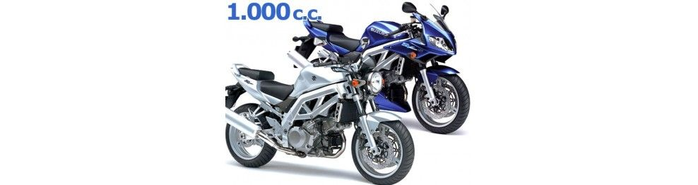 sv 1000 2003-2004
