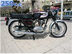250 cc 1985 - 1985