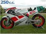 tz 250 1988-2014