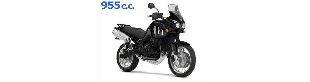 tiger 955 2001-2002
