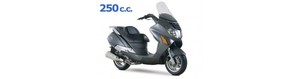ms3 250 2009 - 2010