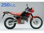 dominator 250 1988 - 1991