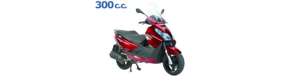 X7 300 evo 2009 - 2010